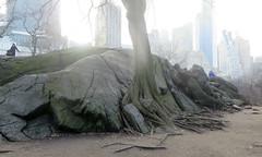 Central Park Rock I (edenpictures) Tags: centralpark newyorkcity nyc manhattan