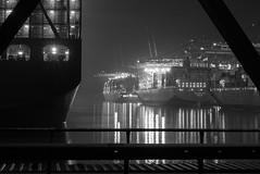 Blick von der Waltershofer Brücke (PhotoChampions) Tags: waltershoferbrücke burchardkai containerschiff elbe hafen hamburgerhafen sw mono monochrome bw blackandwhite bright bnw