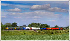 Broad 'Bean' view at Althorp (Jason 87030) Tags: camera girls light sky sun green beautiful june clouds canon shot photos duo pair transport northamptonshire railway sunny vegetable location cargo double container crewe crop engines fields cancan boxes cans machines agriculture northants locomotives tilbury lasses alternatingcurrent freightliner 2015 althorp newline class86 wcml nicepair 86605 86628 al6 acelectric acelectrric photosaresexy