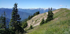 Olympic NP