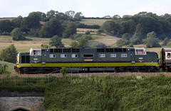 D9009  'Alycidon', English Electric Type 5 Class 55 Co-Co Deltic, Newton Meadows, Somerset (Kev Slade Too) Tags: bath somerset deltic class55 alycidon d9009 type5 pathfindertours 1z30 newtonmeadows