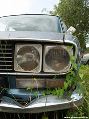 Epave 2009 - Renault 16 TX (Deux-Chevrons.com) Tags: auto classic car barn automobile tx automotive voiture abandon coche rusted oldtimer 16 wreck trusty derelict find wrecked abandonned rus classique youngtimer épave barnfind r16 renault16 renaultr16 ruested