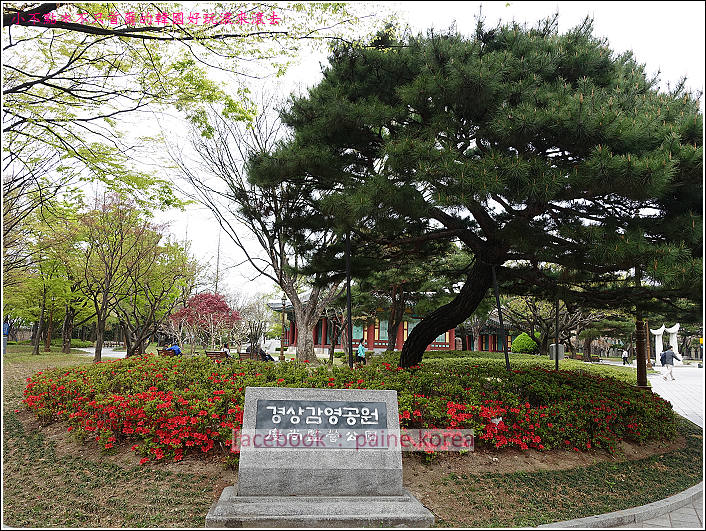 大邱the style guesthouse 慶尚監營公園 (1).JPG