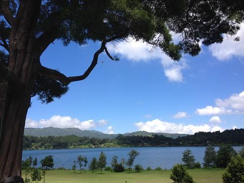 Sao Miguel - Lagoa das Furnas 104