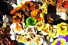 BRASÍLIA - 2016 -  (185) (ALEXANDRE SAMPAIO) Tags: alexandresampaio brasília goiânia cidade fotografia urbano patrimônio história arquitetura planopiloto planejada modernidade moderno oscarniemeyer arte composição criação beleza estética contraste iluminação cor cores formas desenho espaço fantástico possibilidades invisível visível sensibilidade vida energia paz delicadeza tradição estrutura prédio edifício brasil transcendência imaginação mágico magia cultura natureza plantas