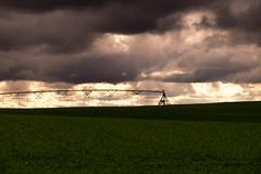 Real rain over fake rain (Swede1969) Tags: keyes farm sprinkler crops green clouds weather rural denair stanislauscounty 12365 3652017
