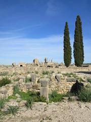 Ruins with column capital, view to Capitoline Temple, Volubilis, Morocco (Paul McClure DC) Tags: morocco almaghrib fèsmeknèsregion volubilis jan2017 roman architecture historic