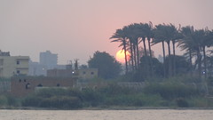 Sunset on the Nile (Rckr88) Tags: cairo egypt sunset nile sunsetonthenile cairosunset africansunset sun nileriver rivers river water africa travel trees tree