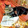 Happy New year 2017 from Baloo the Maine coon (romeosilverpersian) Tags: happynewyear happy2017 mainecoon baloo browntabby tabby 7months mainecoons maineshag longhairedcats cats cat pet pets animalidomestici animals prisma prismaapp