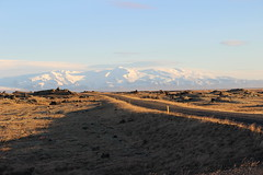 road in iceland (srouve78) Tags: islande iceland route road