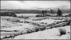 Snowy Strone (Donald Noble) Tags: alltlaraidh badenoch hdr highland invernessshire newtonmore scotland strone flora hill hills ice landscape monochrome plant river snow track tree trees water winter