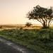Sunrise - iSimangaliso Wetland Park, KwaZulu-Natal, South Africa