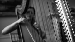 The harpist - Dublin, Ireland - Black and white photography (Giuseppe Milo (www.pixael.com)) Tags: calm print harpist beauty fuji2314 contrast mysterious monochrome photography fuji bw music white fineart canvas prints fujix ireland old tranquil faceless depth beautiful fujifilm light peaceful photo horizontal photograph wallart candid artist europe fujixpro2 dublin blackandwhite xpro2 woman black figure onsale
