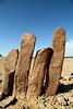 4 pilars (Délirante bestiole [la poésie des goupils]) Tags: arabie saudiarabia standingstones menhir rajajil sakaka protohistoire chalcolithic ancient archeology archéologie thamudéen