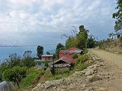 201411.3688.Nepal.Sarangkot (sunmaya1) Tags: nepal sarangkot
