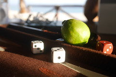 Escape (elevatoro) Tags: cabo mexico trip vacation family 2016 winter reunion holiday special leibow justin casa lasroccas lime seaocean beach backgammon game dice