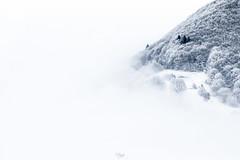 """Petit-Salève (Isat"""") Tags: salève france hautesavoie hiver nature neige nuage"""