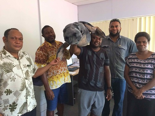 NFC with dugong puppet Oct 2016