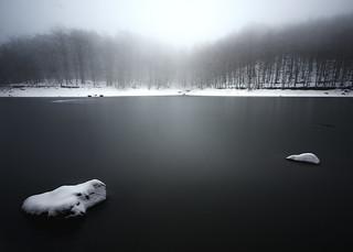 Niebla sobre el lago