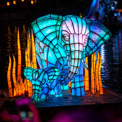 Animal Kingdom - Elephant Play (Jeff Krause Photography) Tags: ap animal colored disney floating floats fountain jets kingdom lake light park preview projections rivers show wdw water theme kissimmee florida unitedstates us