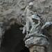 Natividad.... pero en donde?...Sagrada Familia  Pórtico de la Caridad (Barcelona)