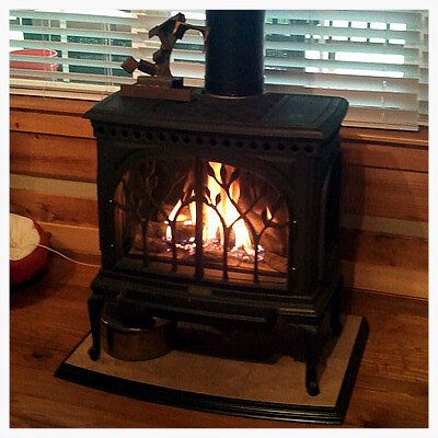 Travis Tree of Life Direct Vent Gas Stove