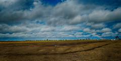 Despues de la tormenta (Cristian Fotografia) Tags: campo colonia bossi