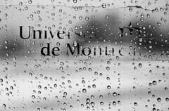 UDM (baldenbe (on/off)) Tags: blackandwhite bw glass rain 50mm nikon noiretblanc kodak f14 stock grain pluie f100 drop nb d76 hp5 pushed nikkor 800 ilford autocollant universitdemontral vitre udm gouttes contast
