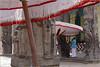 shades, kanchipuram (nevil zaveri (thank you for 10 million+ views :)) Tags: portrait people india man men umbrella photography photo blog worship shrine photographer god photos south prayer praying stock images photographs photograph shade idol devotee zaveri tamilnadu stockimages nevil kanchipuram vishnukanchi nevilzaveri pilgraims