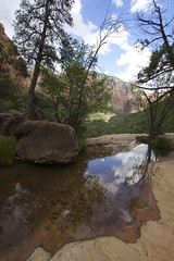 MiRRoR (T Bwa Dl) Tags: park wild west nature landscapes national american zion paysages