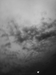 In Between Moments of Pain (raf_h) Tags: sky blackandwhite bw art contrast dark abstractart fineart 365 conceptualart 365challenge 327365