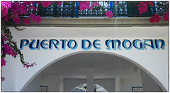 (Mateusz Mathi) Tags: flowers summer sign de puerto spain balcony mini lg gran g2 canaria mogan mateusz 2015 mogn mathi hiszpania wyspy kanaryjskie