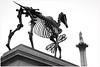 Gift Horse - 4th Plinth Trafalgar Square (nikon_13) Tags: horse london johnson hans trafalgar nelson boris column haacke