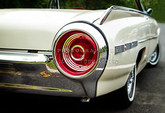 62 Thunderbird Tail Light (Jerry Fornarotto) Tags: white classic ford car closeup vintage classiccar exterior dof muscle antique antiquecar retro depthoffield bumper fender chrome transportation restored vehicle horn collectible fin thunderbird console 1962 musclecar taillight tbird blinker convertable jerryfornarotto antiquemusclecar