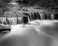 Water (Stanley Burn Woods) (Jonathan Carr) Tags: water rocks burn landscape rural northeast toyo45a 4x5 5x4 largeformat bw black white monochrome