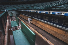 The Dugout (seango) Tags: usa pnw pacificnorthwest pacific northwest nikon d600 seango travel photography travels tourism getaway trip vacation 2016 october seattle washington wa mariners mlb baseball stadium safeco field safecofield park ballpark retractable roof