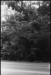 (JacobR97) Tags: aristia400 film 180 standdeveloped rodinal nikonf100 nikon50mmf14 microtekartixscanf2