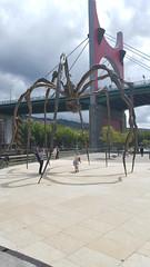 Outdoor art, Guggenheim, Bilbao!