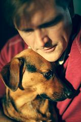Unexpected moment (dcis_steve) Tags: dog portrait man person cute calm cuddle closeness littledoglaughedstories