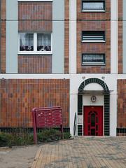 Der Briefkasten, die Blumen. / 24.12.2016 (ben.kaden) Tags: rostock grapengieserstrase architekturderddr architektur plattenbau blumen 2016 24122016