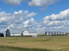 Alberta Skies (RootsRunDeep) Tags: clouds alberta canada barn face silo field farm