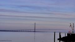 LePont de Norrmandie vu de la jetée Honfleur (Barnie76@ ,Merci pour vos commentaires) Tags: pontdenormandie honfleur laseine couleurs bleu pont ambiance paysage bassenormandie normandie panasonicdmcgx80