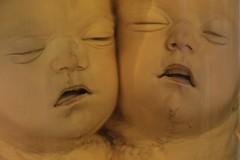 IMG_2230 (anthrax013) Tags: saint petersburg kunstkamera anatomy science medicine dead baby death necro necrophilia corpse abortion formalin