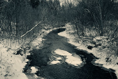 The-Stream-In-Winter (desouto) Tags: nature landscape rivers lakes snow ice sky trees sunrise sunset colors