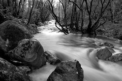 {Long Exposure Stream}FCC137