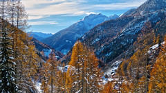 Val Lavizzara - Ticino - Svizzera [Explored #284] (Felina Photography) Tags: landscape mountain alps neve snow autunno autumn lavizzara tessin ticino fusio explore explored inexplore
