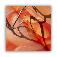 so many books so little time (steffi's) Tags: sixwordstory ourdailychallenge odc buch brille book glasses orange macro shadow schatten rosenbuch heart herz schattenbild silhouette reflection