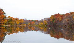 Autumn Day Reflections (Mr. Rubackin Photography) Tags: autumn red orange green fall colors leaves yellow canon photography photo leaf massachusetts 5d marlborough leav