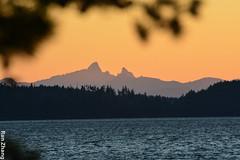 DSC_6043 (Ran Zxzzy) Tags: kayaking desolationsound