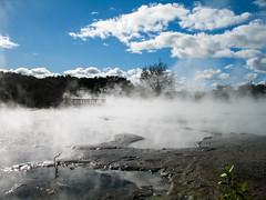 149 - Bassin plein de vapeur à Rotorua